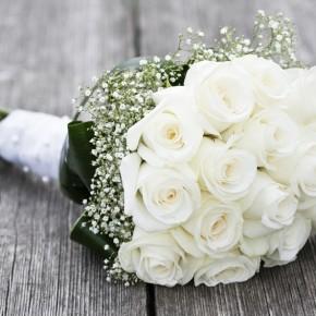 Was Sie über Blumen wissen sollten...